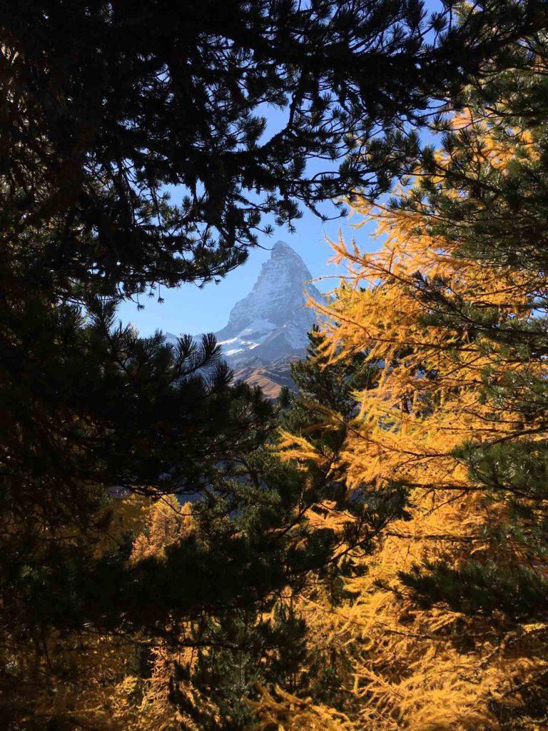 Zermatt-8584